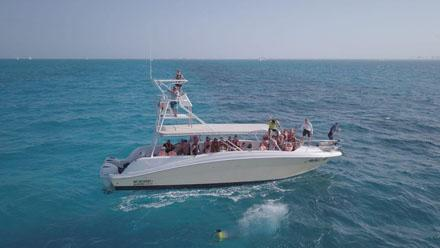 Contoy Island and Isla Mujeres Tour Boats